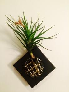 Pineapple_ZhenLiu (1)